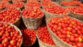 Sky-high prices of tomato a serious problem for locals across Pakistan