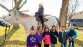 Friends fulfill 5-year-old brain cancer patient's wish of riding a unicorn. Internet is in tears
