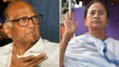 Rise against BJP's authoritarian regime: Sharad Pawar supports Mamata Banerjee in fight against CAA, NRC