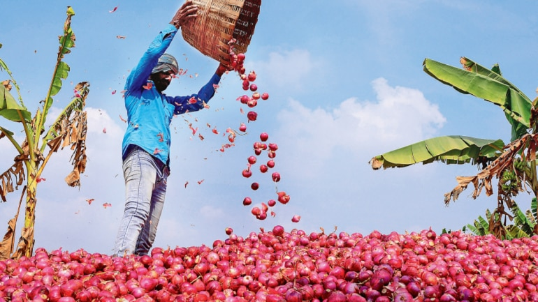 Onion prices have soared across the country, impacting the NCR as well.