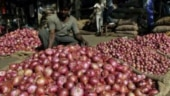Amid price hike, man steals onion bags from shop in Puducherry