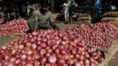 Wholesale onion prices ease in Delhi after increased arrivals