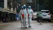 Coronavirus: China deaths rise to 80, Hong Kong bans visitors from Hubei