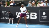 Serena Williams breezes into 2nd round with straight sets win vs Italian qualifier in Auckland Classic
