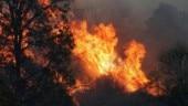 Australian authorities steer mass evacuation as wildfires raze holiday towns