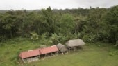 Cult 'anointed by God' kills 7 in Panama Jungle