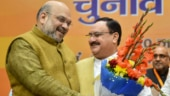 BJP will become stronger, expand further under JP Nadda's leadership: Amit Shah