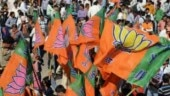Stones hurled at BJP's pro-CAA rally in Jharkhand, police use teargas