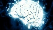 Brain diseases influence speaking and reading ability: Study