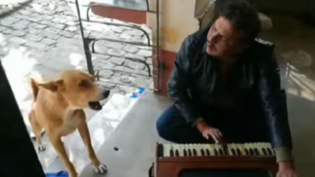 Dog sings along with man as he plays Teri Meri Kahaani on harmonium. Has Ranu Mondal seen it?