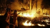 Thunderstorms, rain bring relief to Australia after catastrophic bushfires