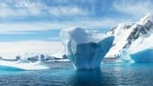 Arctic sea ice can't 'bounce back' even if climate change is reversed: Study
