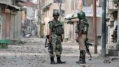 Pak Army lobs mortars in Poonch, 2 Army porters killed