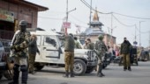 Envoys of 17 nations, including US, reach Kashmir for 2-day visit to assess conditions since shutdown