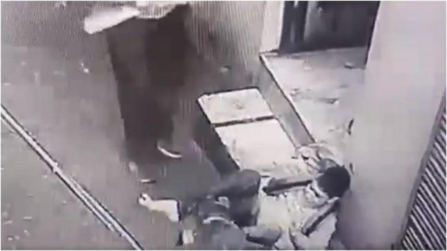 Pet pitbull attacks teenage boy in Punjab. Disturbing CCTV video goes viral