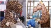 Woman wears giraffe costume to protect herself amid coronavirus outbreak