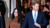 Internet gifts Prince Harry Most Attentive Husband award. This viral video will make you agree