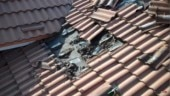 Fact Check: Old, unrelated video of bats streaming out from a roof linked to coronavirus outbreak