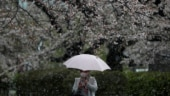 Japan urges citizens to stay away from a third of the world