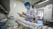 Coronavirus: China's Jan-Feb exports tumble, imports slow as outbreak batters trade and business