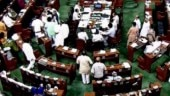 1 assaulted, other heckled: Congress, BJP members push, shove each other in Lok Sabha