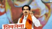 Shiv Sena takes swipe at MNS over 'shadow cabinet'