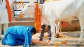 BJP leader, who organised Gau Mutra party, arrested after cop falls ill