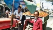 Coronavirus in India: No buyers, farmers bear shutdown brunt