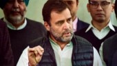 Rahul Gandhi leads protest in Parliament against suspension of Congress MPs from Lok Sabha