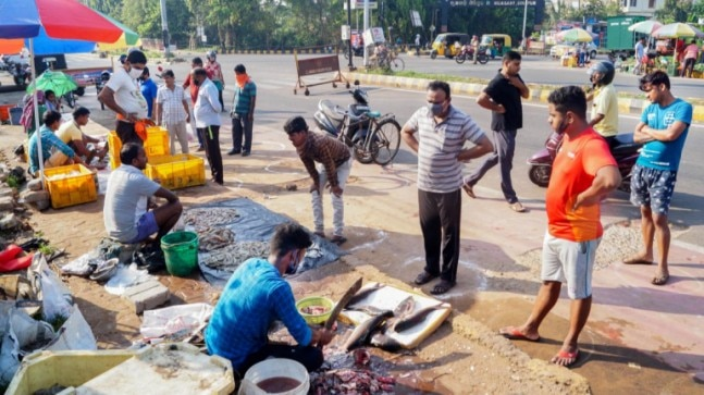 Goa govt allows fisheries cooperatives to resume fish sale, no word on export