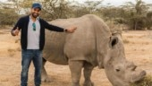 Have to think about animals like our family: Rohit Sharma wants people to help animals during Covid-19 lockdown