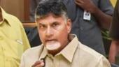 Bogus health bulletins by Andhra govt letting coronavirus spread unchecked: Chandrababu Naidu