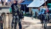 Pakistani national among two Jaish militants killed in J&K's Anantnag