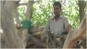 Coronavirus outbreak: Uttar Pradesh man builds treehouse to maintain social distancing