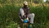 As Delhi families bury coronavirus victims, a gravedigger watches on