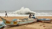 40-feet whale carcass washes ashore in Odisha