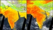 Heatwave: Feel the ground beneath you burning up? Satellite images show you aren't wrong