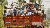 Lockdown: Truck drivers make big bucks transporting stranded migrants