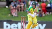 Don't like cricket, love it: David Warner and his favourite shots