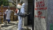 Covid-19 pandemic may be over in India around mid-Sept, claims mathematical model-based analysis