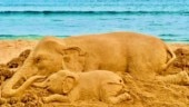 Kerala elephant death: Sudarsan Pattnaik condemns cruel act with sand art on Puri beach