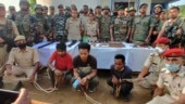 Three rhino poachers held with ammunition in Assam's Karbi Anglong district