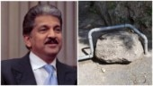 Anand Mahindra conducts Rorschach Test on Twitter. Desi netizens have interesting replies
