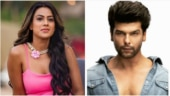 TikTok and other Chinese apps banned in India: Kushal Tandon to Nia Sharma, TV stars laud the decision