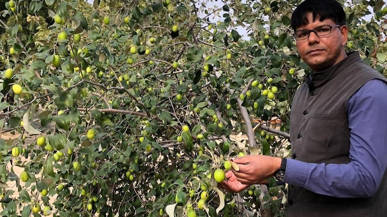 World Environment Day special: Sociology professor shyam sundar jiyani makes deserts bloom as forests in Rajasthan - India News