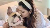 Samantha's latest photo cuddling Hash is all about pet love. See pic