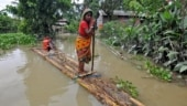 Assam's quixotic flood solution
