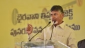 TDP to give Rs 2 lakh to Andhra rape victim, Naidu to adopt her, provide for education