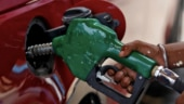 Fuel demand recovers from 13-year-low as economic activity gains momentum