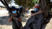 Miss cuddling your loved ones? People in Israel hug trees to beat the coronavirus blues
